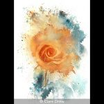 Watercolour Rose #1